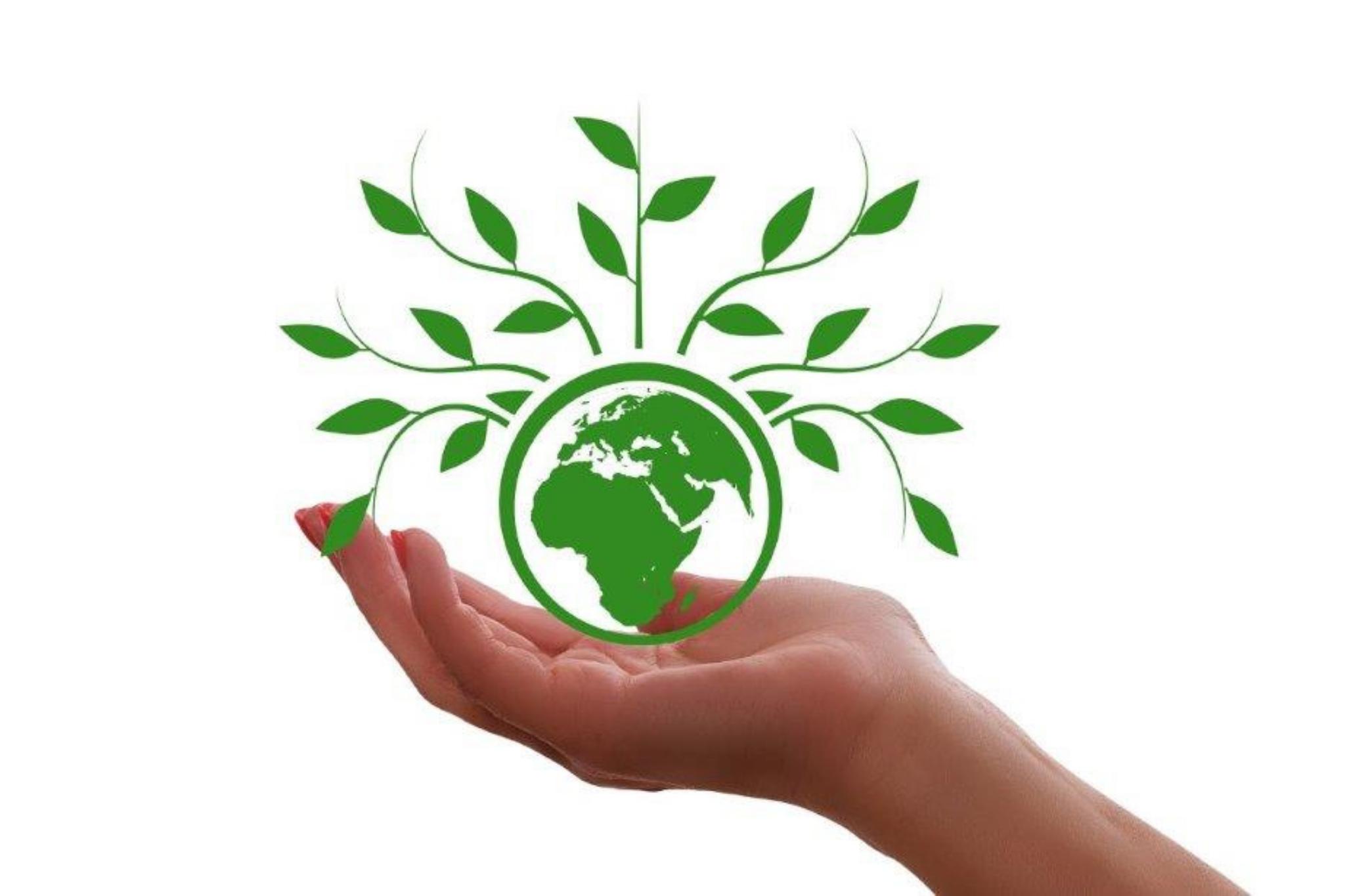 Réduire notre empreinte écologique